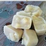 Apple Ginger Yogurt Frozen Dog Treats