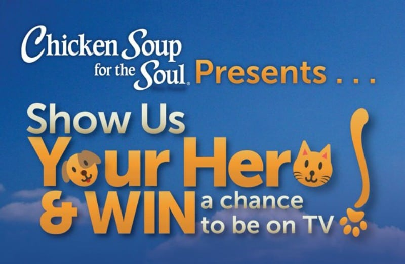 Chicken Soup for the Soul - Show us Your Hero