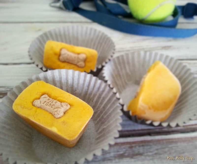 Easy Frozen Pumpkin Dog treats