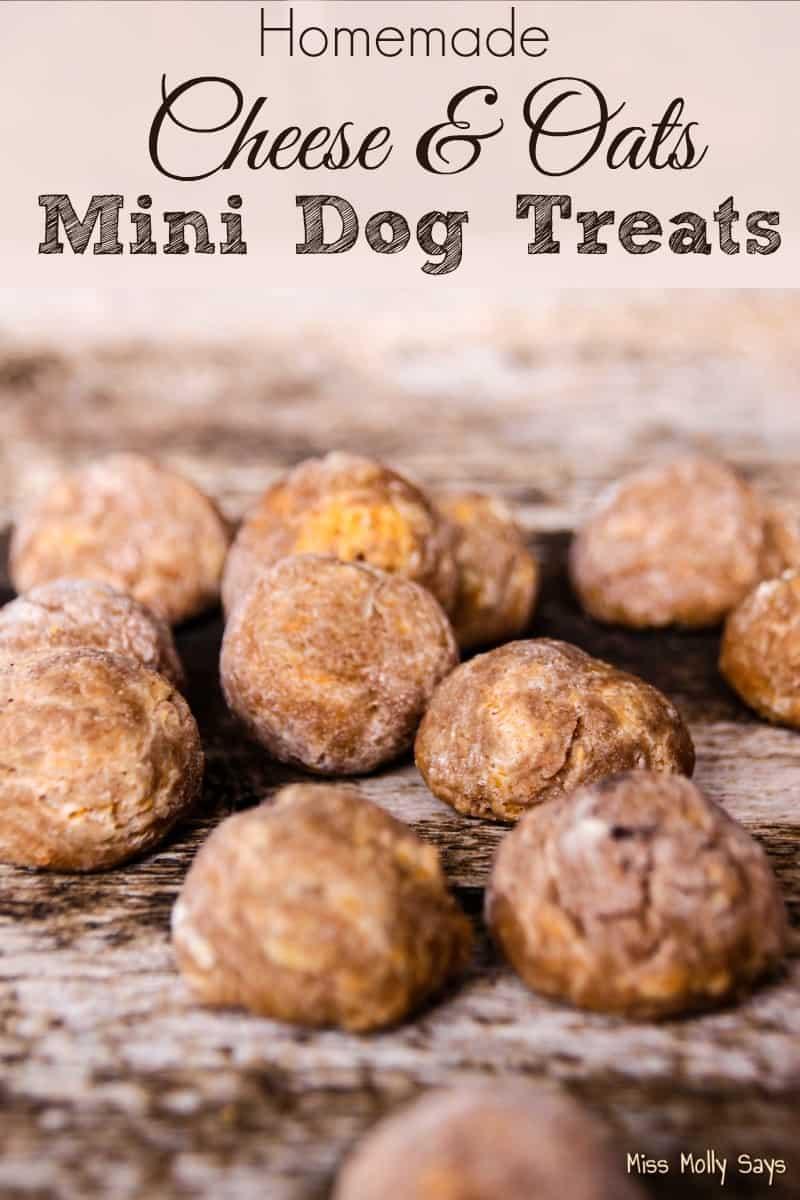 Homemade Cheese & Oats Mini Dog Treats