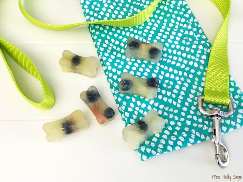 Homemade Frozen Apple and Blueberry Dog Treats
