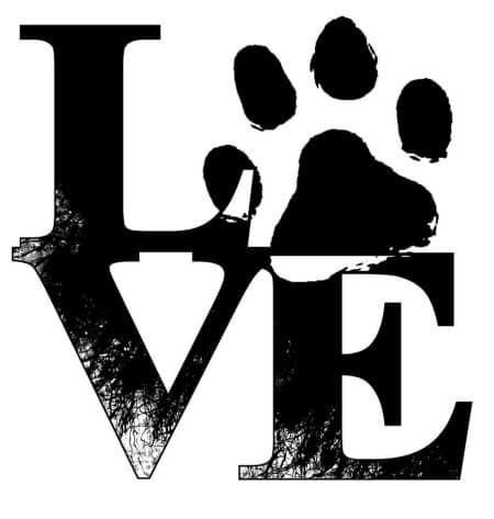 Paw - Love square