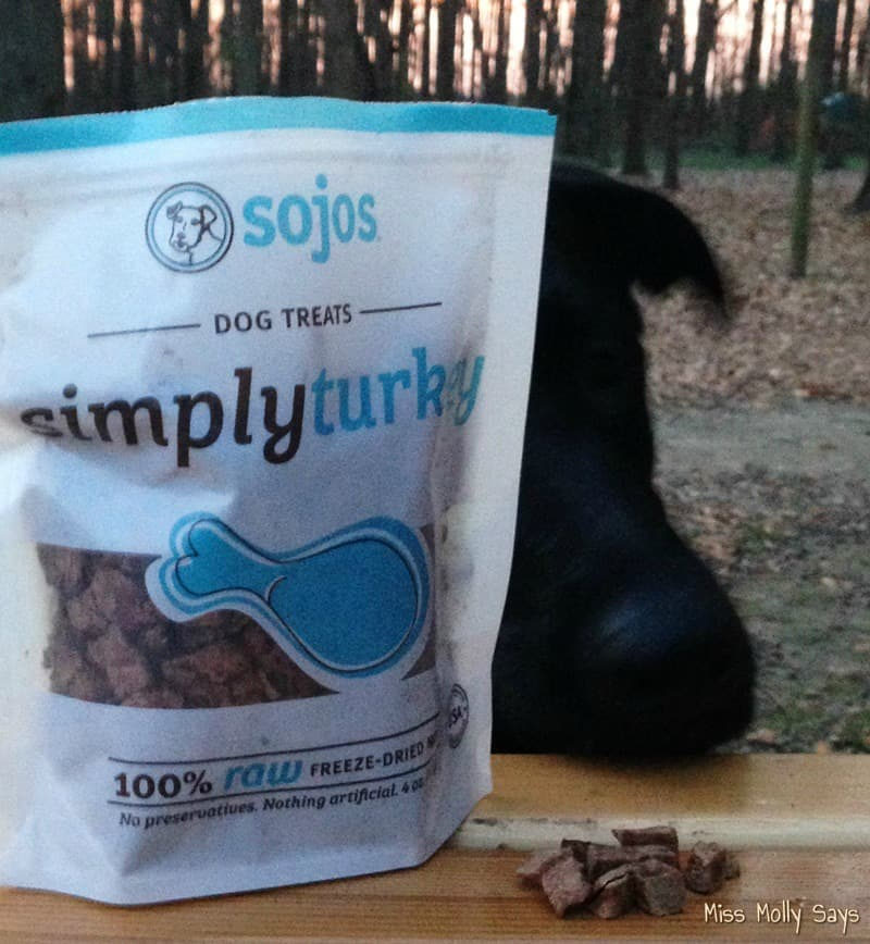 Sojos Simply Turkey Dog Treats for a Real Raw Meat Treat #Review