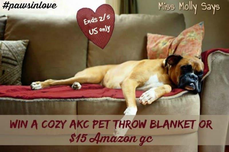 #Win a Cozy AKC Pet Throw Blanket OR $15 Amazon GC #pawsinlove - ends 2/5 US Only