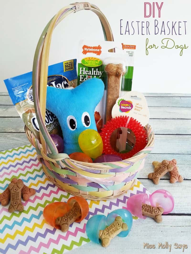 Diy easter basket for dogs miss molly says diy easter basket for dogs negle Image collections