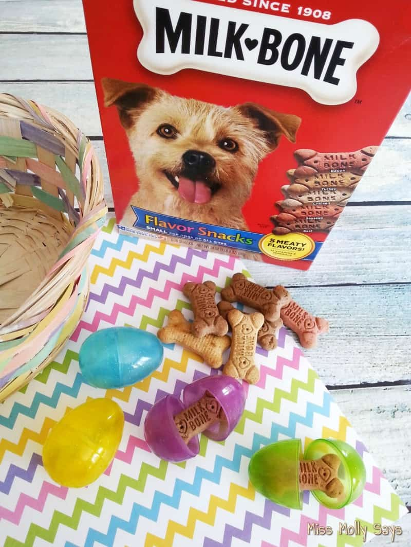 DIY Easter Basket for Dogs supplies 3