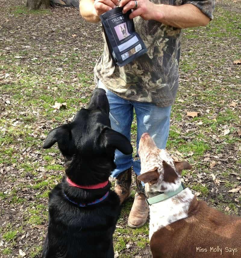 TruDog Freeze Dried Raw Dog Treats