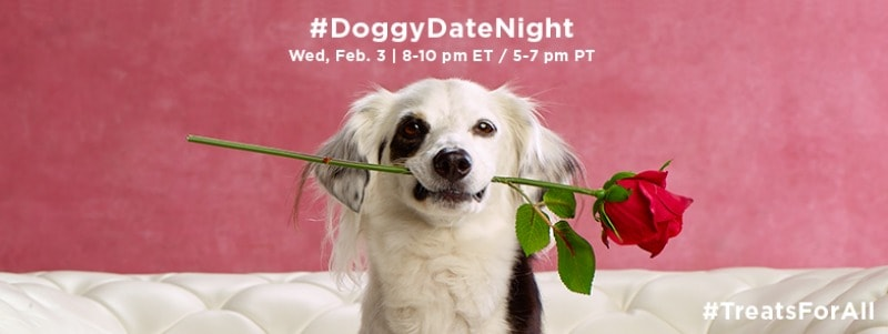 Hugs and wet, sloppy kisses! You're invited to a #DoggyDateNight Twitter Party on 2/3 8pm est