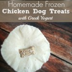 Homemade Frozen Chicken Dog Treats