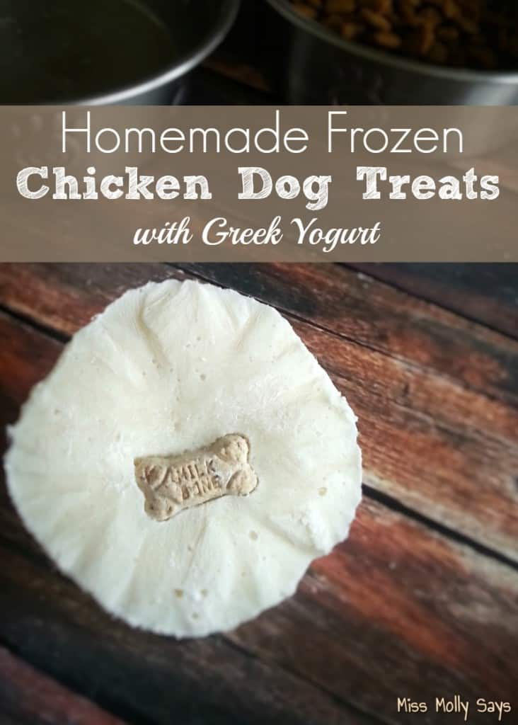 Homemade Frozen Chicken Dog Treats