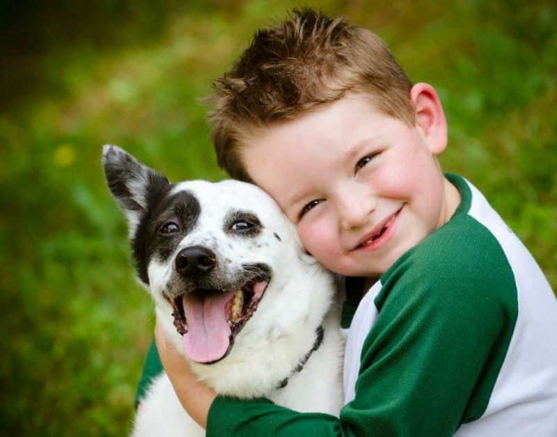 How a Dog can Help your Child Struggling with Behavioral Issues