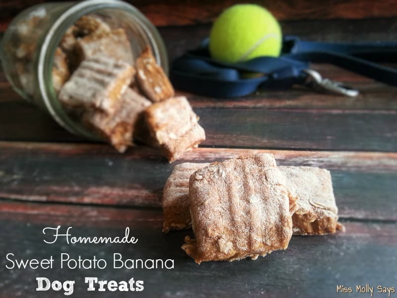 Homemade Sweet Potato Banana Dog Treats