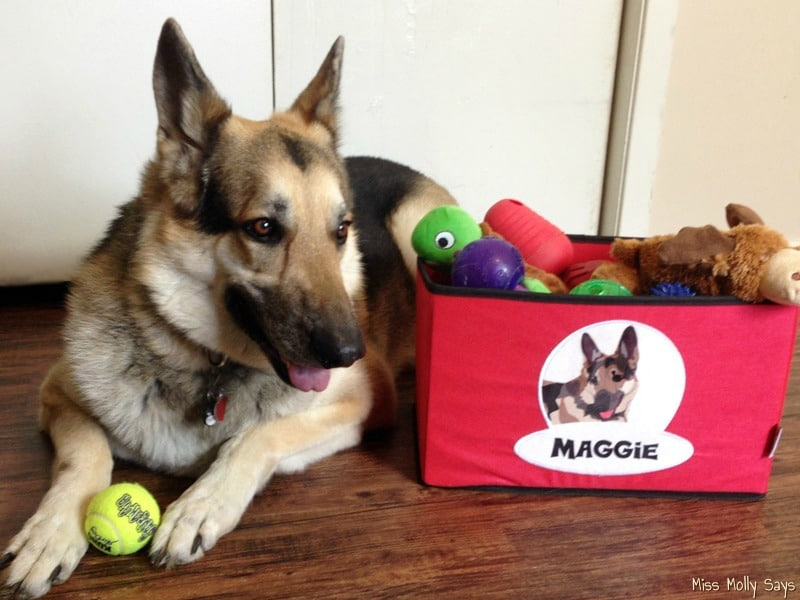 PrideBites Personalized Pet Products as Featured on Shark Tank! #PrideBites