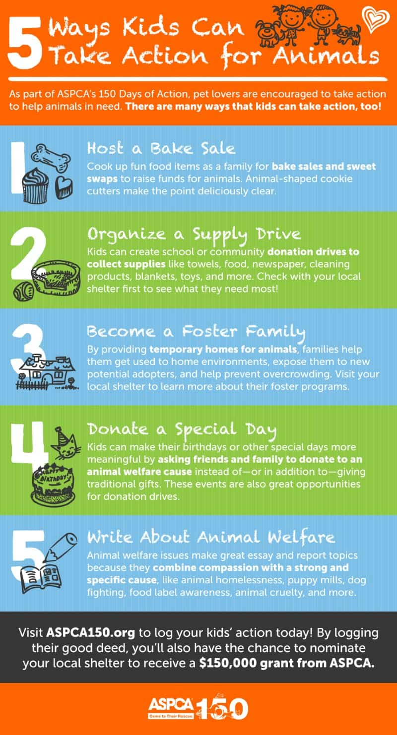 aspca-kids-for-animals-infographic