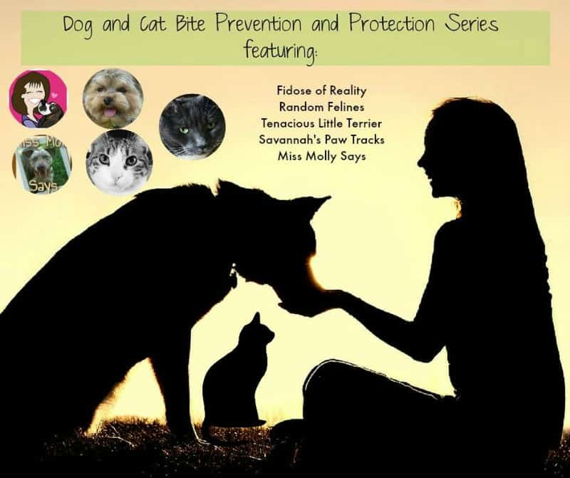 Dog and Cat Bite Prevention and Protection Series