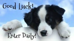 Good Luck - Enter Daily - Dog