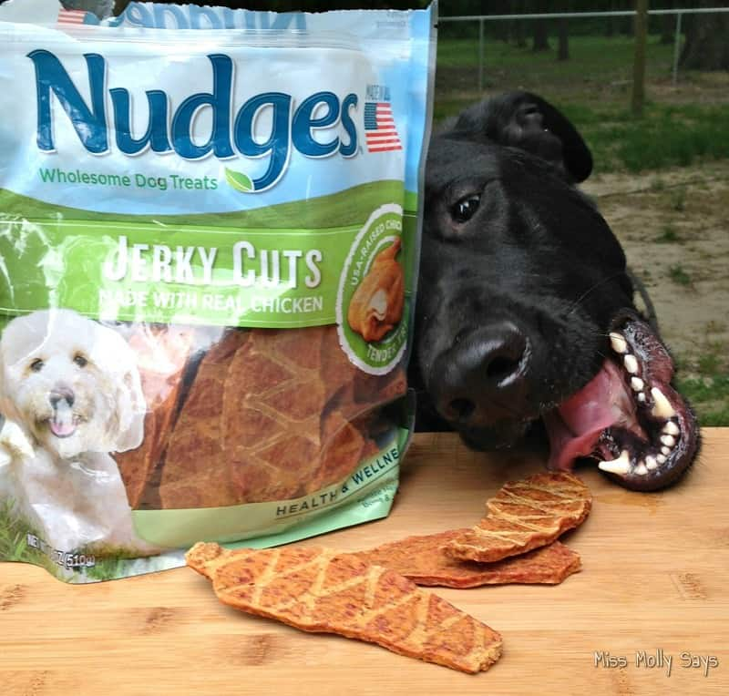 Nudges® Jerky Cuts #NudgeThemBack