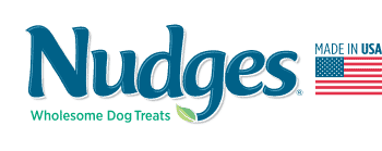 Nudges logo small