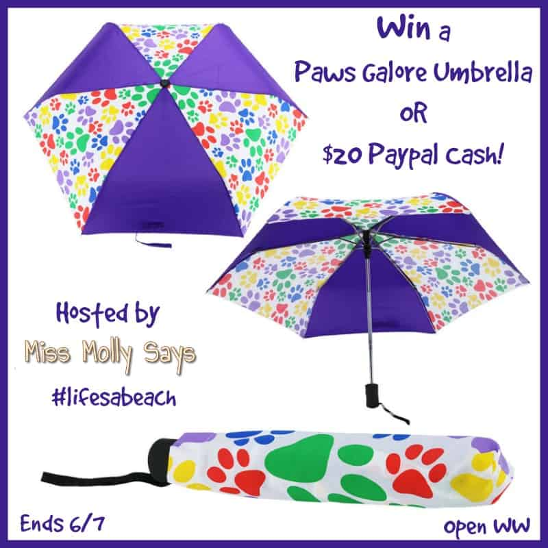 #Win a Paws Galore Umbrella OR $20 Paypal Cash! #Memorialday #lifesabeach - ends 6/7 Open WW