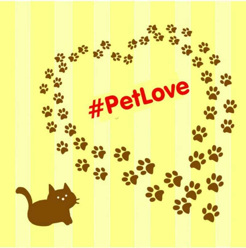 Pet Love heart