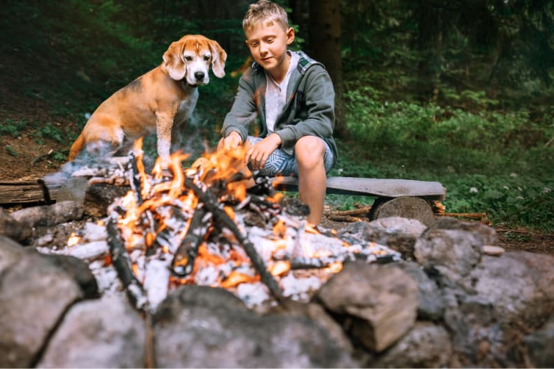 Boy and dog sitting by a campfire
