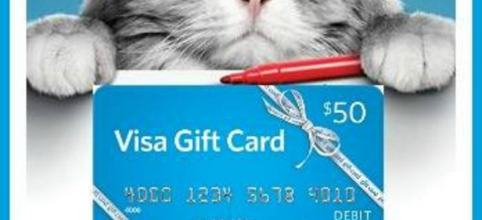 #Win a Nine Lives Prize Pack – includes a $50 Visa GC! – ends 8-6 US Only