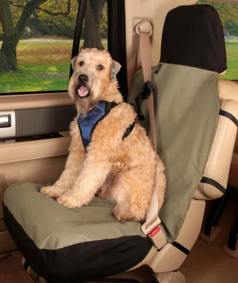 Strange Solvit Pet Seat Covers Because Dogs Love Car Rides Miss Ibusinesslaw Wood Chair Design Ideas Ibusinesslaworg