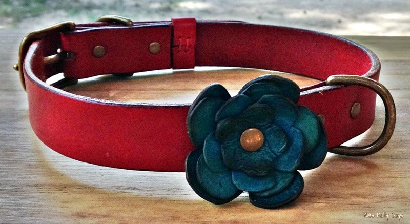 iQ Studio Leather Dog Collar - Serenity - red with blue flower