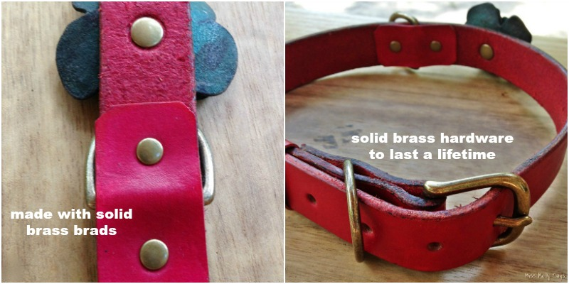 iQ Studio Leather Dog Collar collage