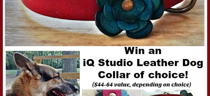 #Win an iQ Studio Leather Dog Collar of choice! #DogDaysGiveaways – ends 8/7 US Only