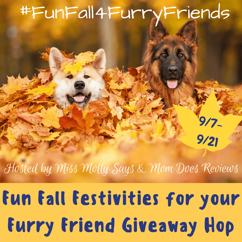 Fun Fall Festivities for your Furry Friend Giveaway Hop