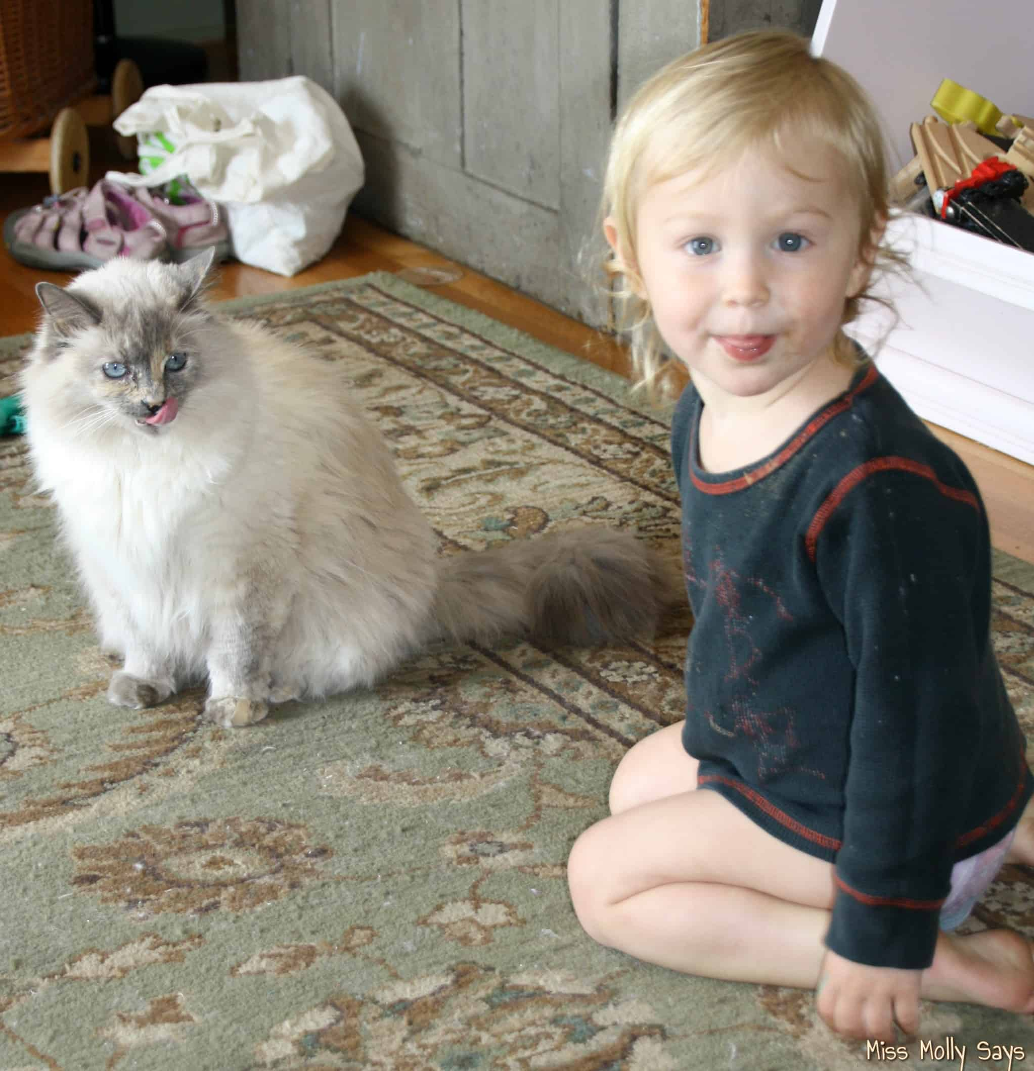 baby and cat both sticking out their tongues