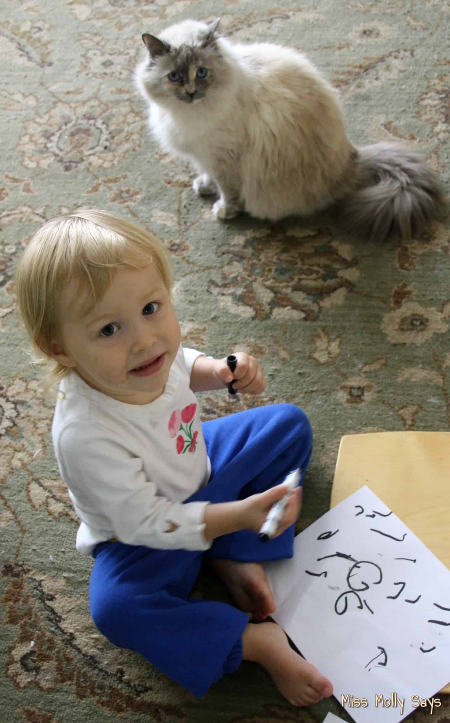 cat watching baby draw