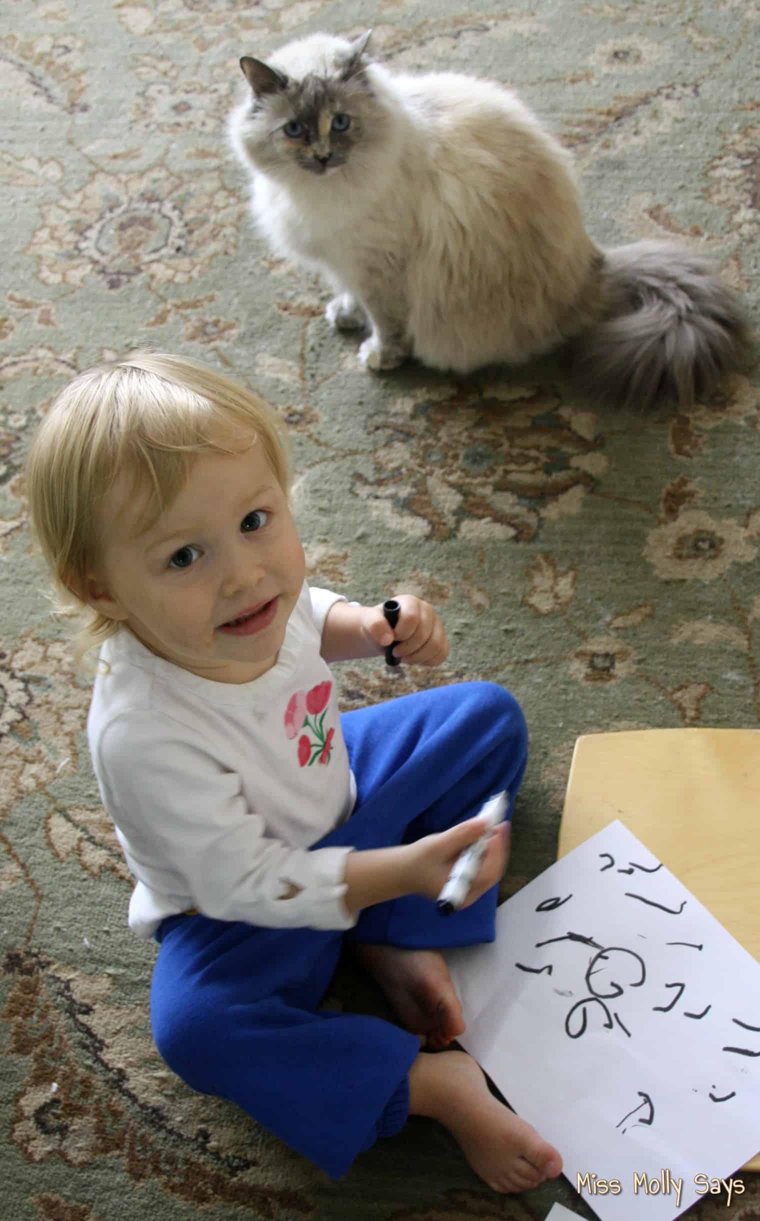 cat watching baby draw