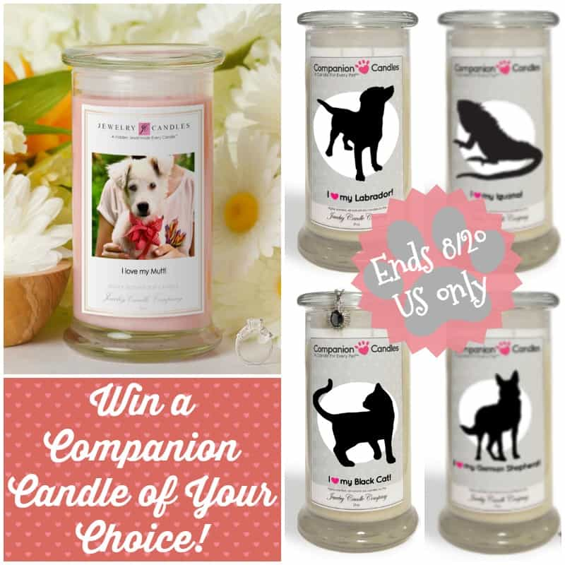 #Win a Companion Candle of your Choice! - ends 8/20 US Only