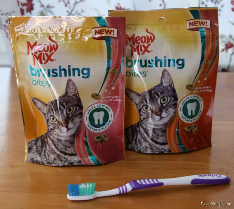 Meow Mix Brushing Bites Helps Keep Daisy's Teeth Clean