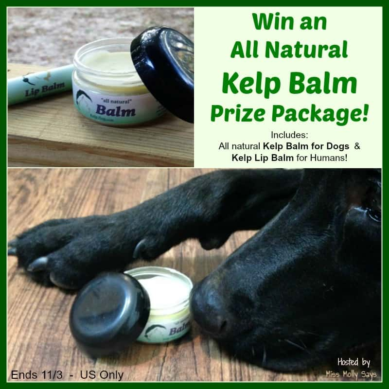 #Win All Natural Kelp Balm Prize Package from Kelp Dog - ends 11/3 US Only