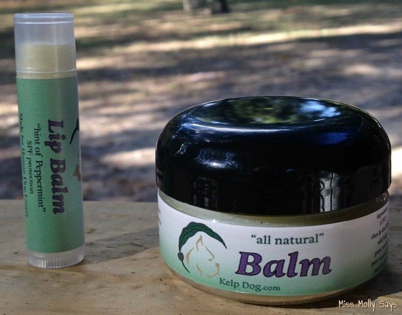 Kelp Balm for dogs and Kelp Lip Balm for humans