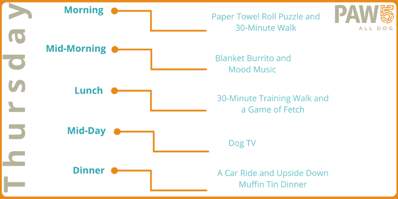 PAW5 Enriched Life Challenge - Thursday menu plan