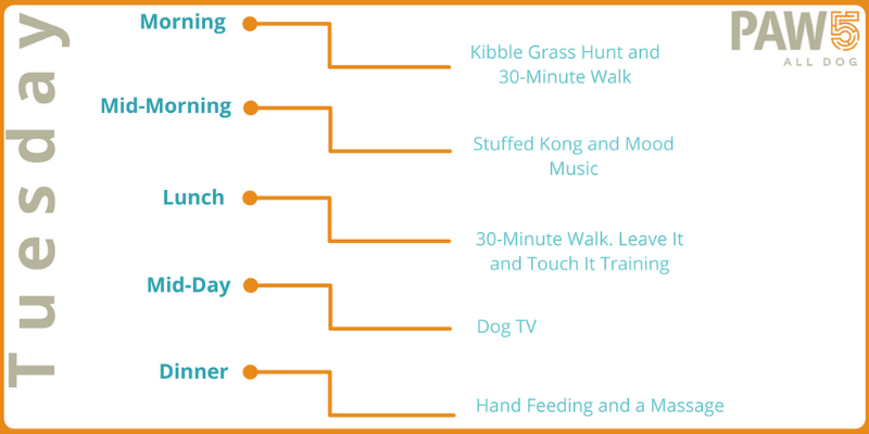 PAW5 Enriched Life Challenge - Tuesday menu plan