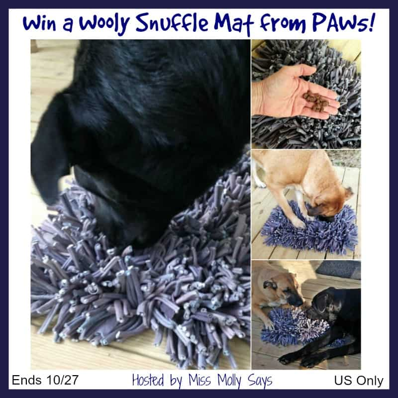Win a fun Wooly Snuffle Mat from PAW5 for Your Pup!