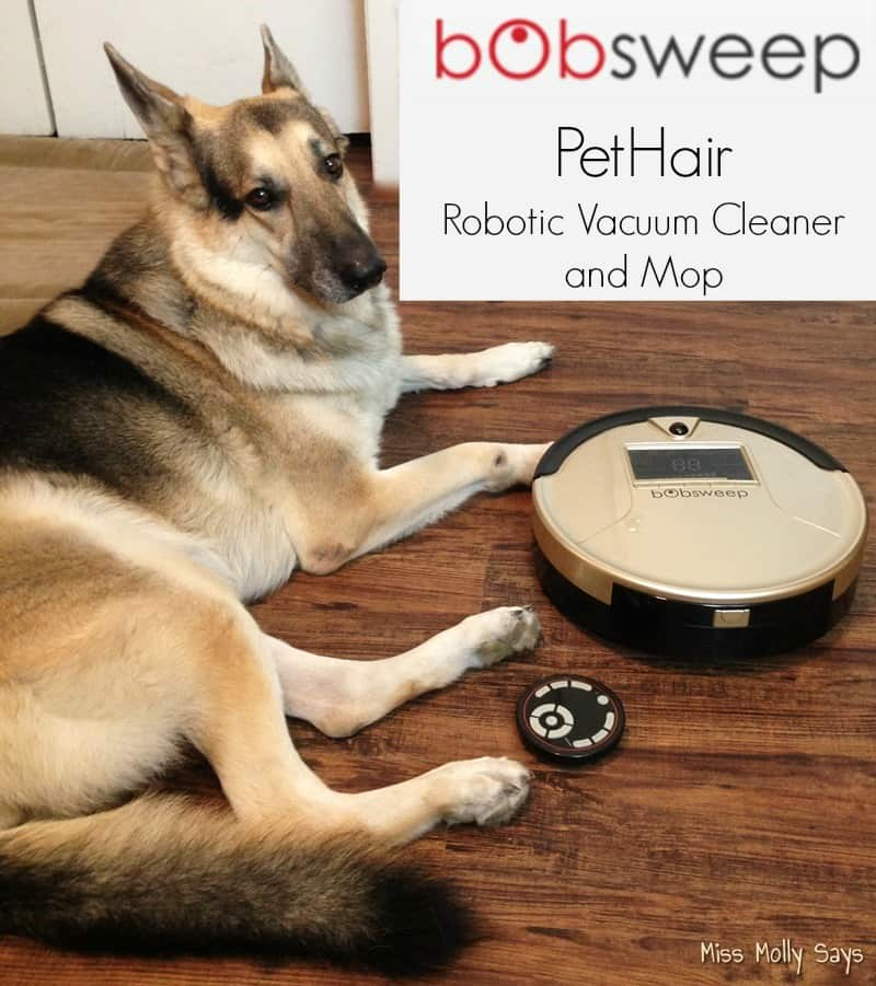 bObsweep PetHair can Help You Conquer Dog Hair and Dirt! #bObsweepPetHair