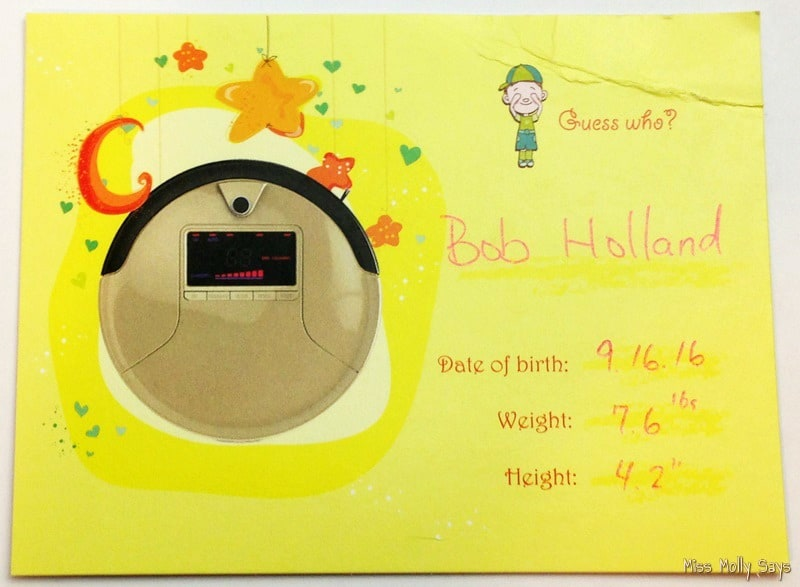 bObsweep PetHair Birth Announcement