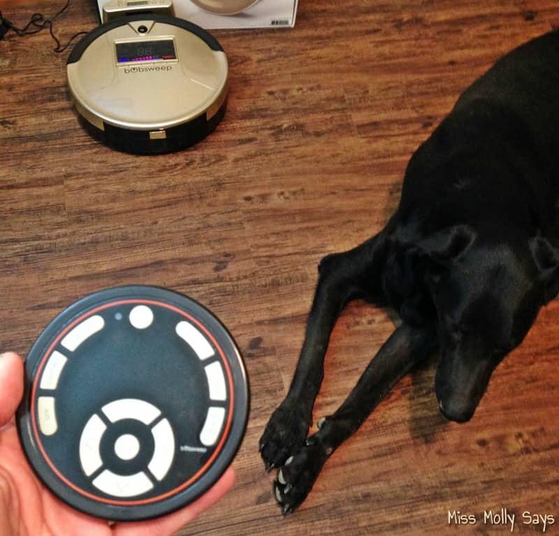 bObsweep PetHair remote control