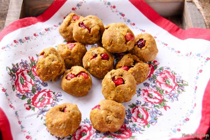 cranberry-pumpkin-dog-treats-2