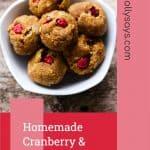 Homemade Cranberry & Pumpkin Dog Treats