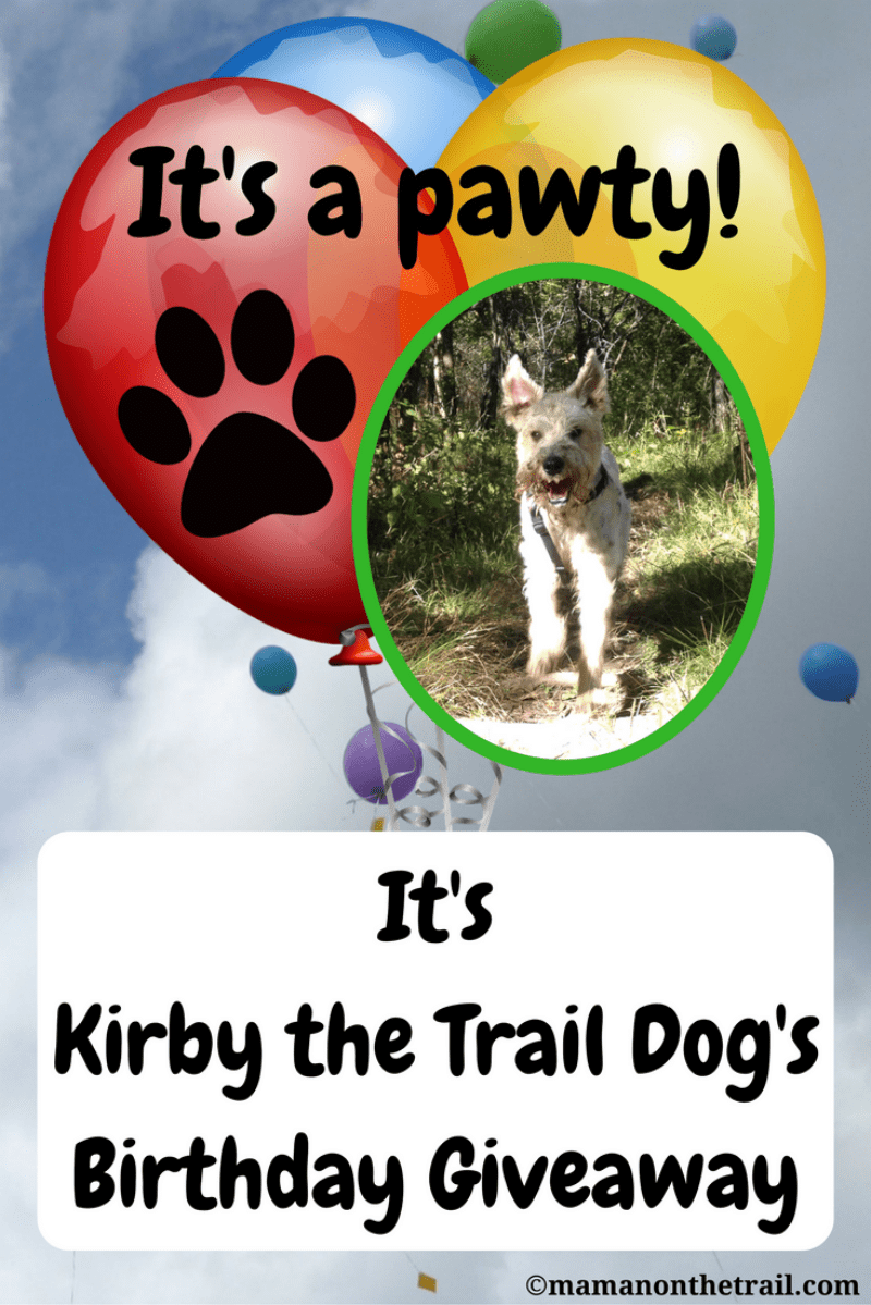 Kirby's Birthday Giveaway - Win $180 Worth of Dog-Friendly Prizes! 3 Prizes - 3 WINNERS!
