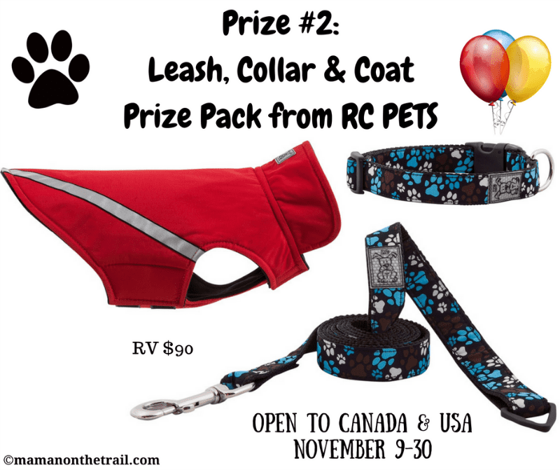 Kirby's Birthday Giveaway! Prize #2: Leash, Collar & Coat Prize Pack from RC PETS (ERV $90)