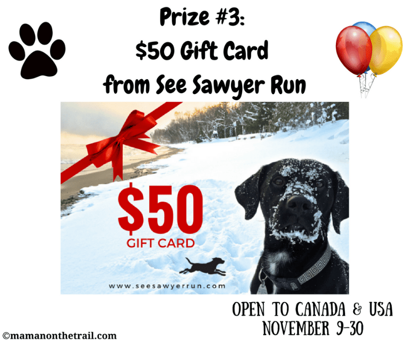 Kirby's Birthday Giveaway! Prize #3: $50 gift card from See Sawyer Run
