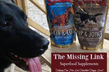 The Missing Link Superfood Supplements: Helping Our Pets Live Healthier Happy Lives!